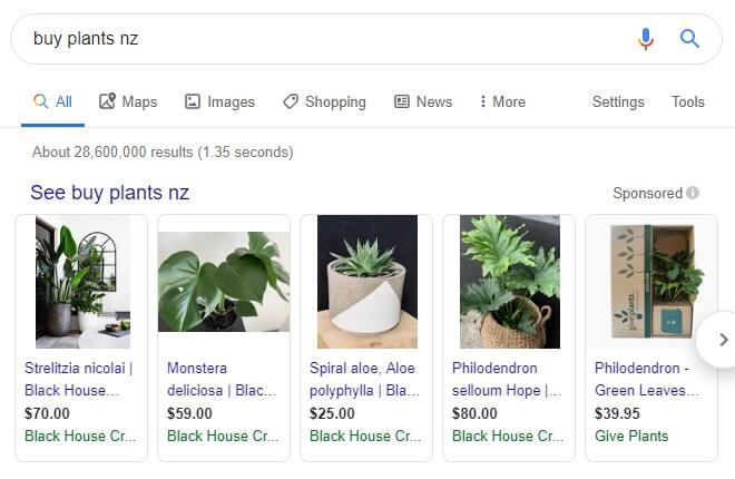 Google Shopping Agency NZ